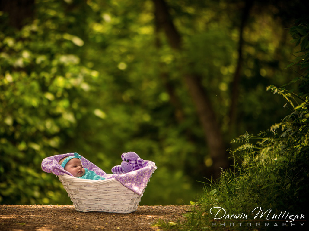 Edmonton-baby-photographer-outdoor-location-baby-in-basket